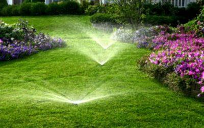Irrigation Install, Sprinkler System
